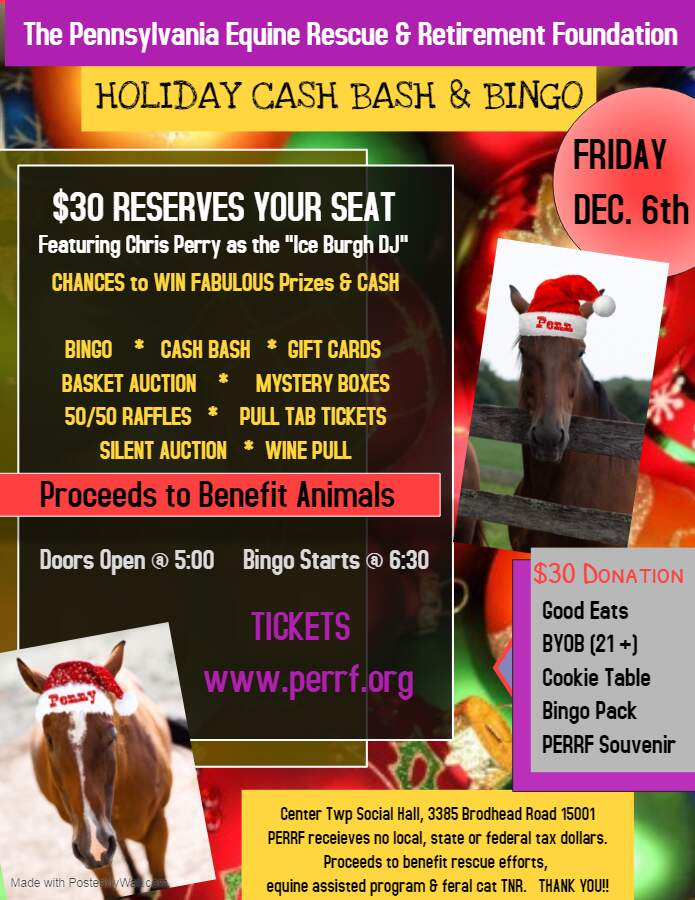 Holiday Bingo & Cash Bash Extravaganza