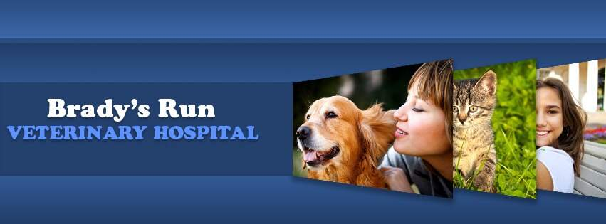 Medical | Beaver County Tourism